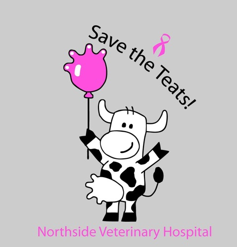NORTHSIDE_VETERINARY_HOSPITAL