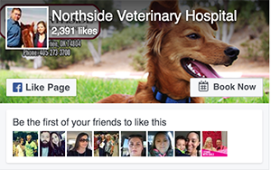 Facebook -Northside Veterinary Hospital